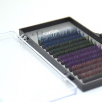Premium Bicolor